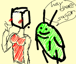 Grasshopper hugging Sugar