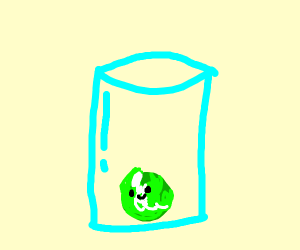 Lettuce in a Cup