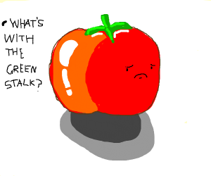 A tomato whose stalk is too green