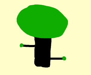 tree with black rectangle