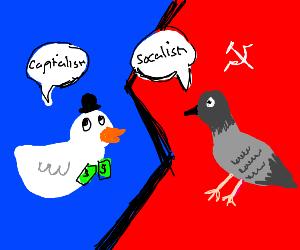 Capitalist duck vs socialist pigeon