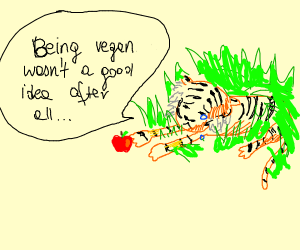 Anorexic tiger underneath grass