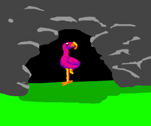 Flamingo in a Cave