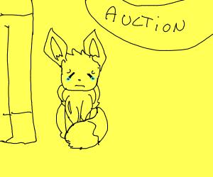 malnourished pokemon auction