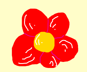 a red floxer with polen