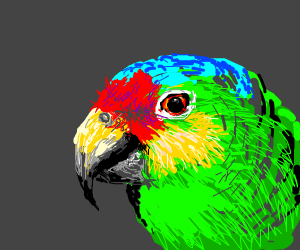 Parrot but with yellow and blue colors