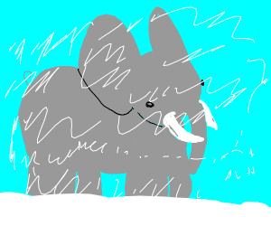 elephant in a snowstorm
