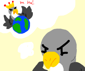 birds thinks about taking over the world
