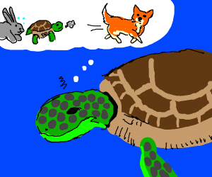 turtle having fever dream