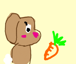 brown bunny next  carrot (MAKE SURE ITS CUTE)