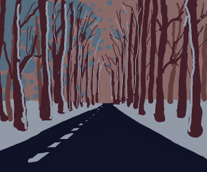 road through the winter woods