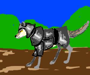 A wolf knight
