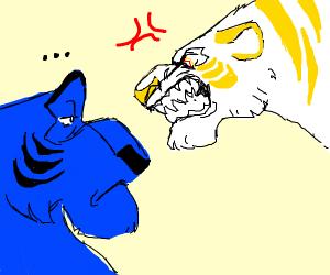 Gold/White tiger doesnt like Blue/Black tiger