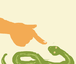 Booping a sneks nose