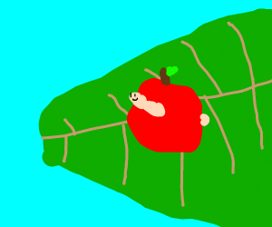 a worm in a red apple