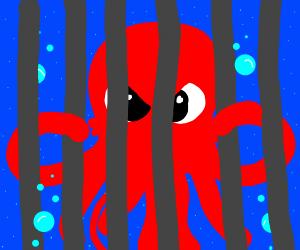 Octoprison