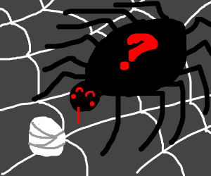 Spider with 12 legs