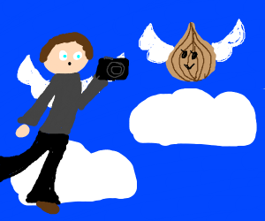 Photographer flying with an Onion