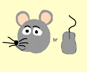 A real mouse or a computer mouse?