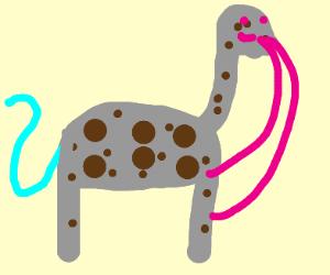 Weird animal