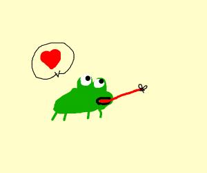 frog loves flies