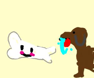 kawai bone getting stared at buy hungry dog