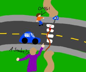 Snake crosses the road