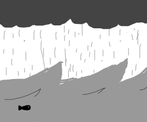 fish in a storm