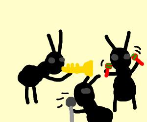 Mariachi ants band