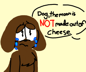 dog is sad about moon not made out of cheese