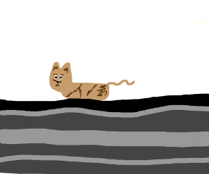 Cat but no limbs