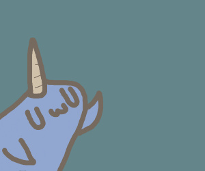 cute narwhal