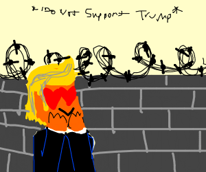 donald trump staring at his wall