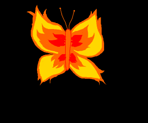 butterfly on fire