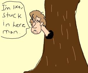 Shaggy stuck inside of a tree's bark