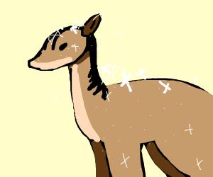 Sparkling horse