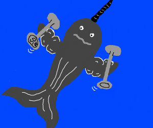 A muscly narwhal holding dumbbells