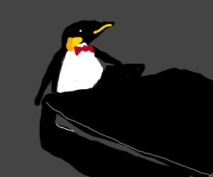 Penguin plays piano
