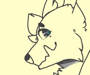 Blue Eyes White Furry