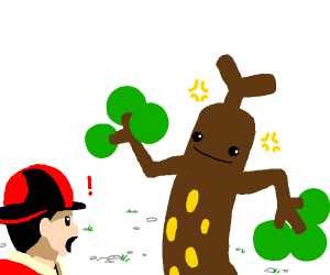 Trainer amazed by Sudowoodo