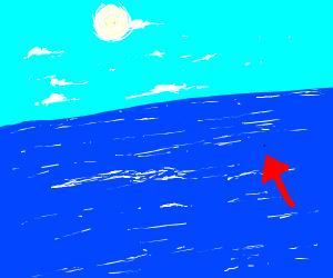 detailed fly flying over ocean