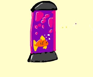 Fish in a lava lamp