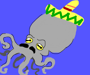 mexican squid