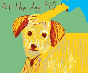 pet the dog pio