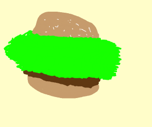hamburger with a lot of lettuce :3