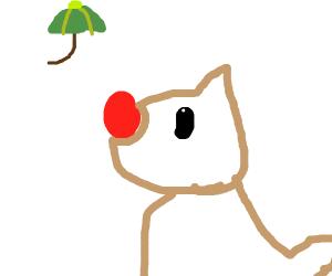 rudolf wants umbrella