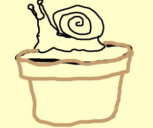 Snail Planting