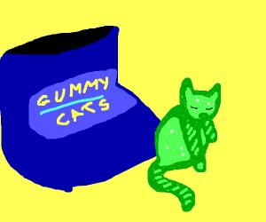 gummi bear cats