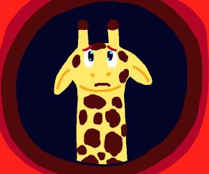 scared baby  giraffe :(