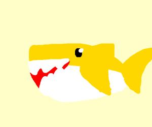 Baby shark (pls not the song)
